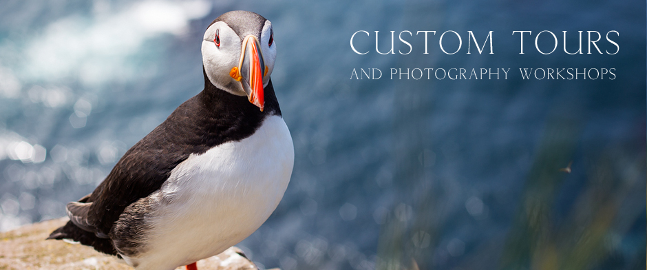Custom Tours and Photography Workshops